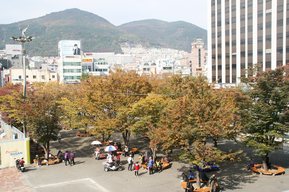 autumn in busan