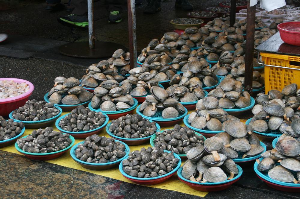 jagalchi fish market busan 2