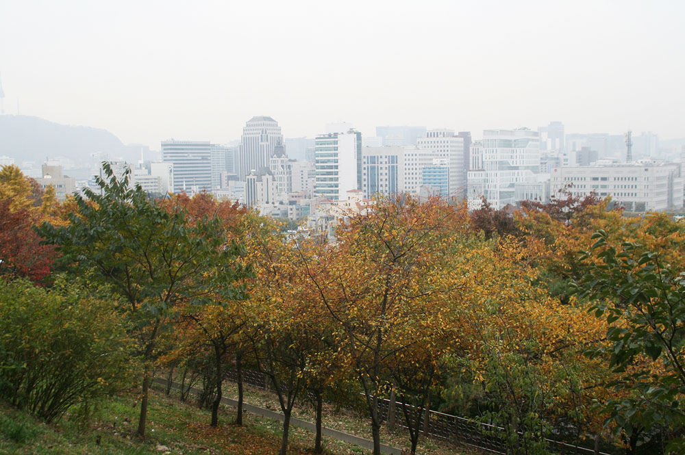 fall foliage korea seoul 7